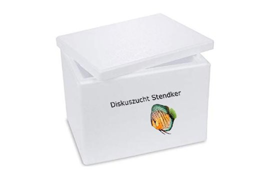 STENDKER NOURRITURE CONGELEE BOX 2