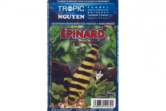Epinards 100g Blister