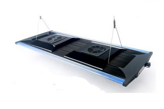 QMAVEN ZT6800 eau de mer 230 W Noir ZETLIGHT -